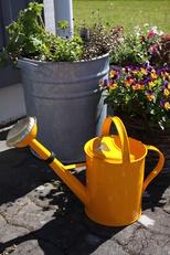 Vattenkanna 5 L orange