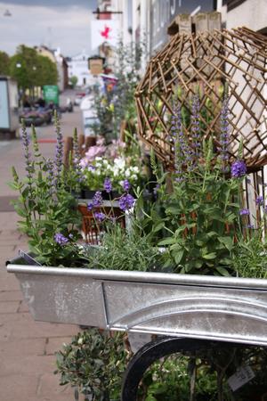 Set med hållare & blomlåda balkong 100 cm
