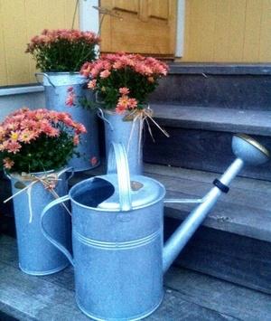 Set med 3 vaser Zink