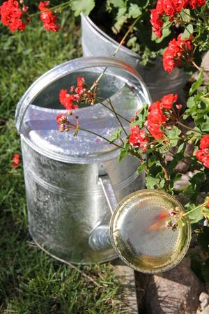 Vattenkanna 5 L i zink